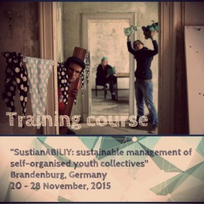 Vacantes para el seminario internacional SustainABILITY sustainable management of selforganised youth collectives